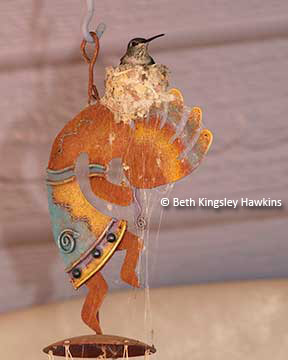 hummingbird nest on Kokopelli wind chime